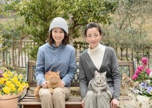 前田敦子、志磨遼平らが宮沢りえ主演ドラマ『グーグーだって猫である2』に出演