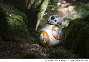 セレブスター並みのスケジュール!『スター・ウォーズ/フォースの覚醒』BB-8 緊急来日決定
