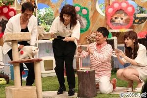 稲垣吾郎、佐藤健ら猫好き芸能人が集結!「SMAP×SMAP」猫スペシャル5・23放送