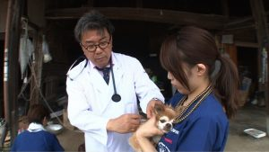 """傷ついたペットも人も助けたい…熊本地震で""""ペット同伴避難所""""を開設した獣医師・德田竜之介に密着"""