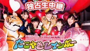 『たこやきレインボー なにわンダーランド2016@大阪オリックス劇場 独占生中継!』