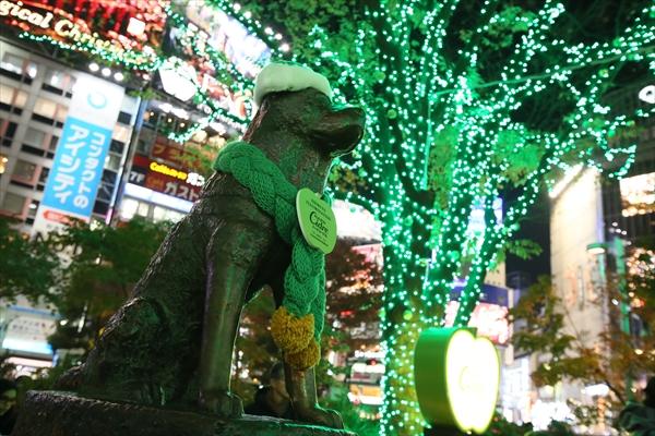 渋谷ハチ公前がハードシードル仕様のりんご模様のグリーンのイルミネーションに包まれる