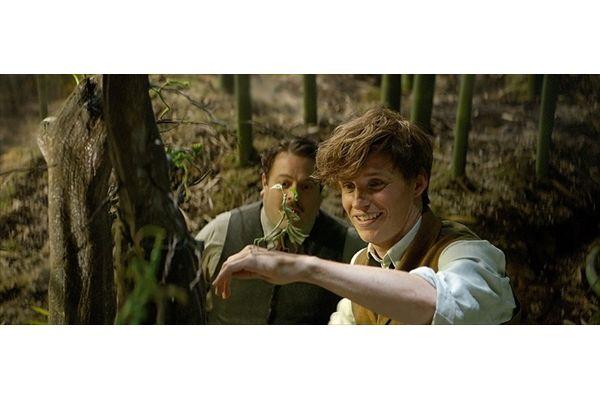 4・19ブルーレイ&DVD発売「ファンタスティック・ビーストと魔法使いの旅」未公開シーンが到着!アメリカの魔法学校校歌を初披露