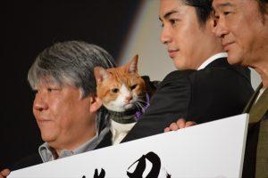 映画「猫忍」完成披露試写会舞台あいさつ