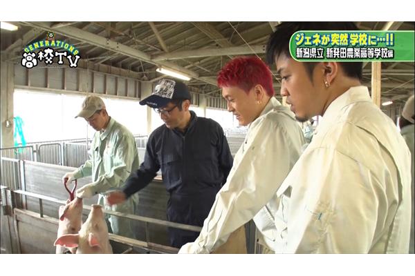 数原龍友、中務裕太が子ブタにデレデレ『GENERATIONS高校TV』6・11放送