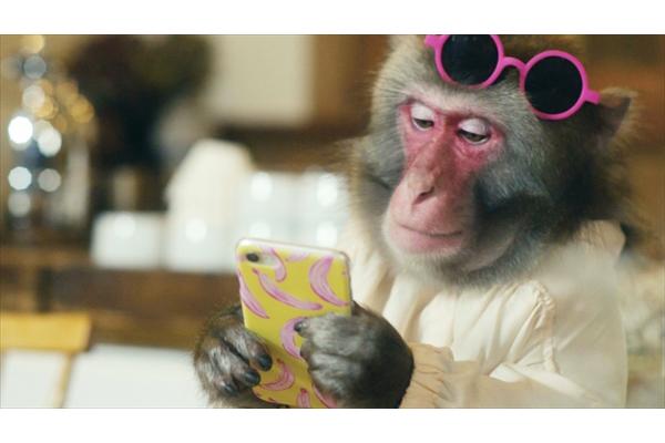 """猿のインスタグラマー""""トッチー""""がU字工事と栃木の魅力を探る!新作動画を一挙公開"""