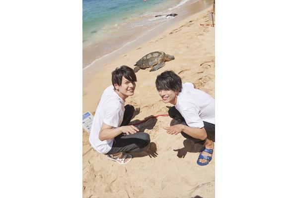 黒羽麻璃央&崎山つばさがウミガメに大はしゃぎ!『俺旅。』3・13最終回