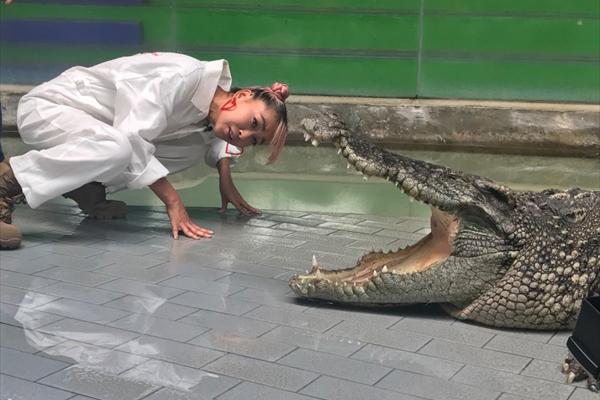 青山テルマvs巨大ワニ!小山慶一郎&中丸雄一MC『おたすけJAPAN』3・21放送