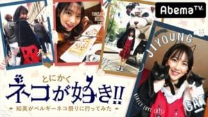 『とにかくネコが好き!!~知英がベルギーネコ祭りに行ってみた~』