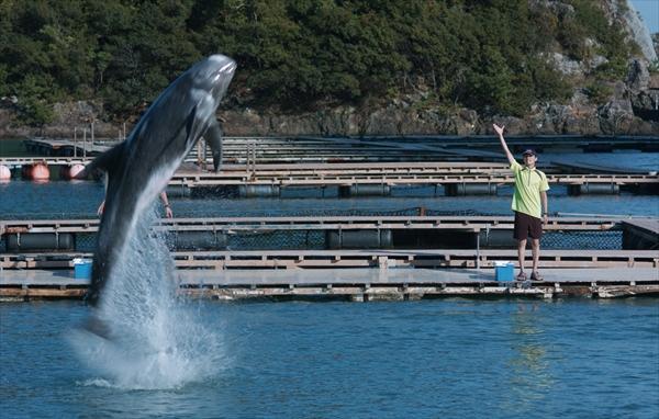 <p>『ボクはボク、クジラはクジラで、泳いでいる。』</p>