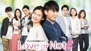 「Love or Not 2」