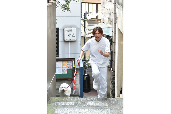 ジャニーズWEST小瀧望が『全力坂』で疾走!犬のダイキチと神楽坂を駆け上がる