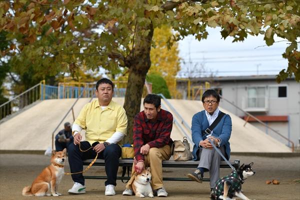 おっさん3人×柴犬3匹のほっこりドラマ『柴公園』第1話 場面写真公開