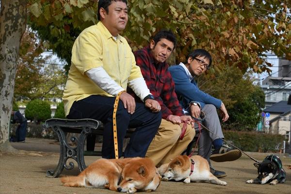 『柴公園』渋川清彦&大西信満&ドロンズ石本の柴犬メロメロ対談&新写真公開