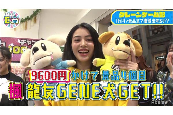 "E-girlsが""ジェネ犬""クレーンゲームに挑戦!"