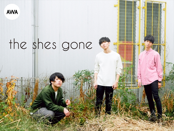 the shes gone