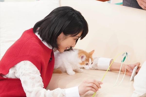 松本穂香が猫と自撮りに挑戦!『モノシリーのとっておき2時間SP』2・2放送