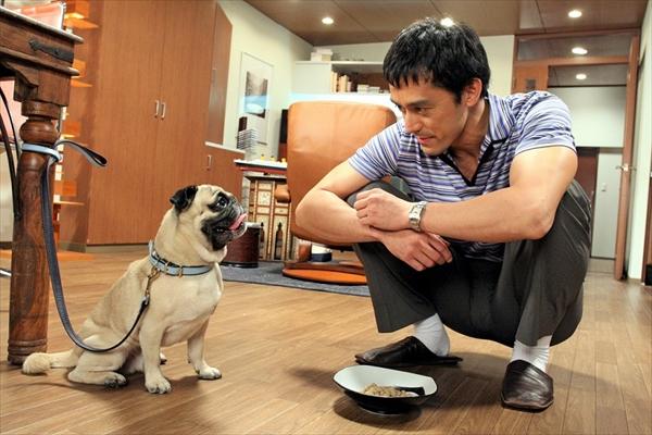 『結婚できない男』(2006年放送)