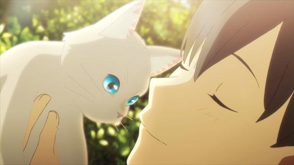 泣きたい私は猫をかぶる』
