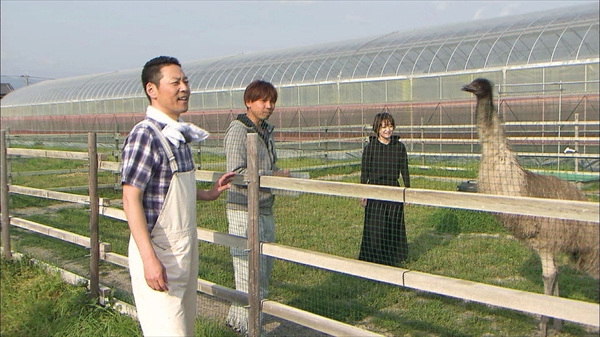 『梅沢富美男と東野幸治のまんぷく農家メシ!』
