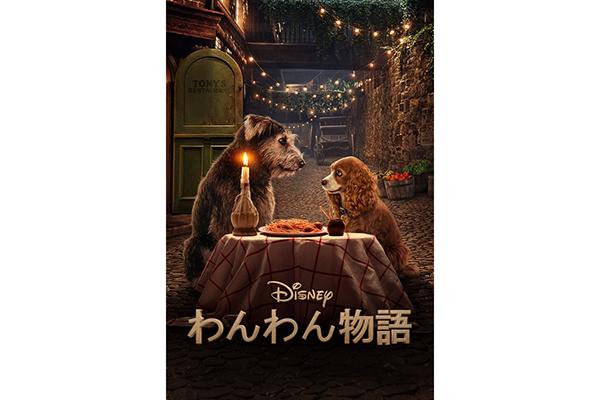 本物の犬たちが名演!ディズニー『わんわん物語』完全実写版 プロモーション映像公開