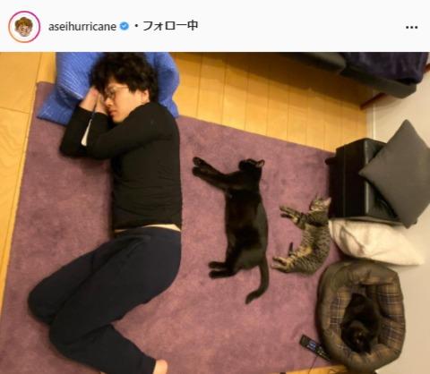 """<span class=""""title"""">ミキ亜生の愛猫との爆睡写真にほっこり「世界一可愛い川の字」「ほんとすてき」</span>"""