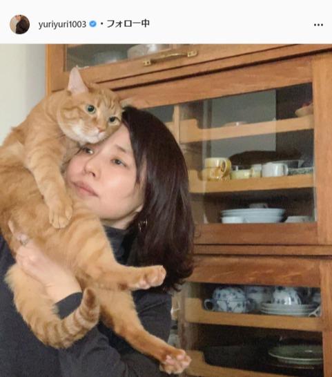 "<span class=""title"">石田ゆり子、愛猫との気だるい写真に反響「同じ顔してますね」「アンニュイ」</span>"