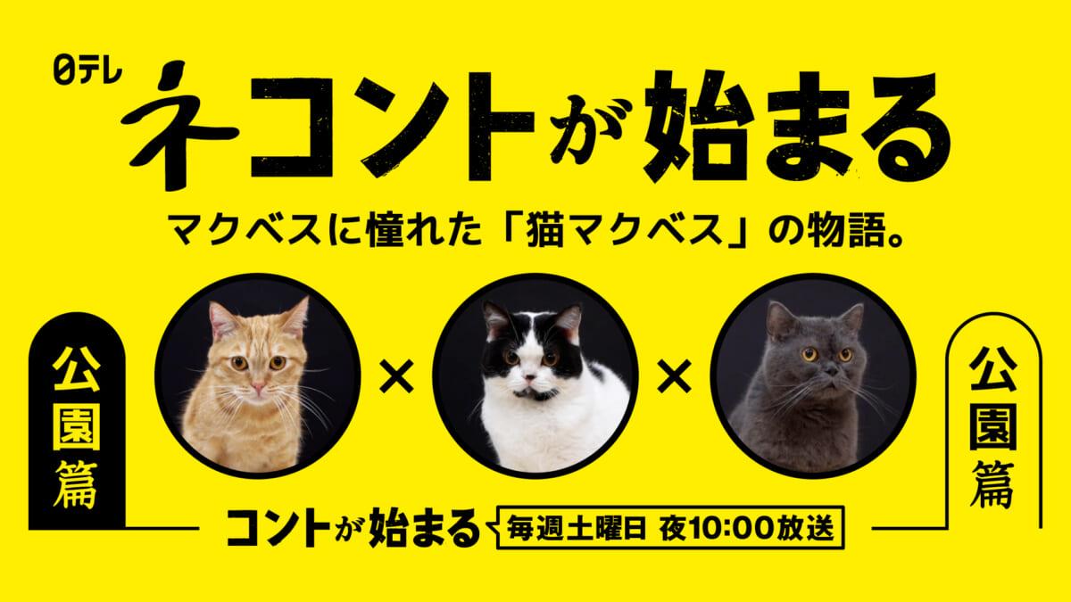 "<span class=""title"">『コントが始まる』マクベスに憧れた""猫マクベス""の物語「ネコントが始まる」動画公開</span>"