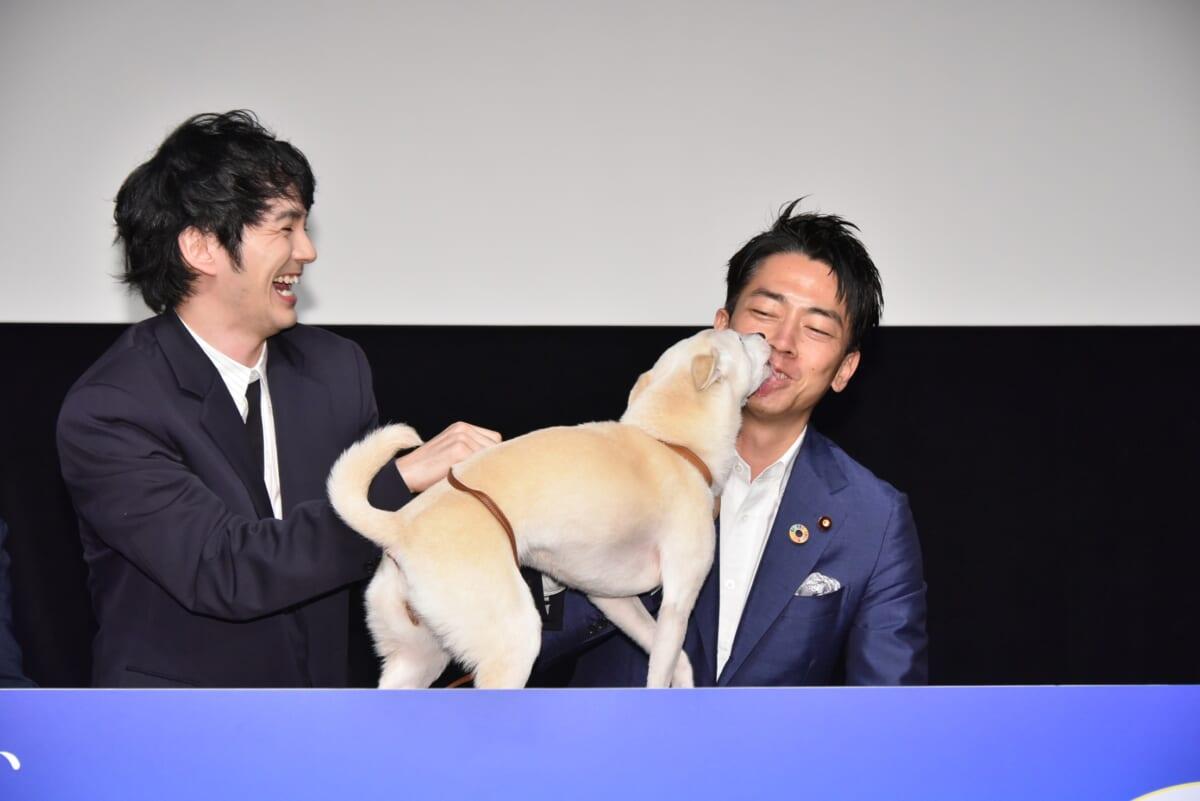 映画「犬部!」ティーチインイベント