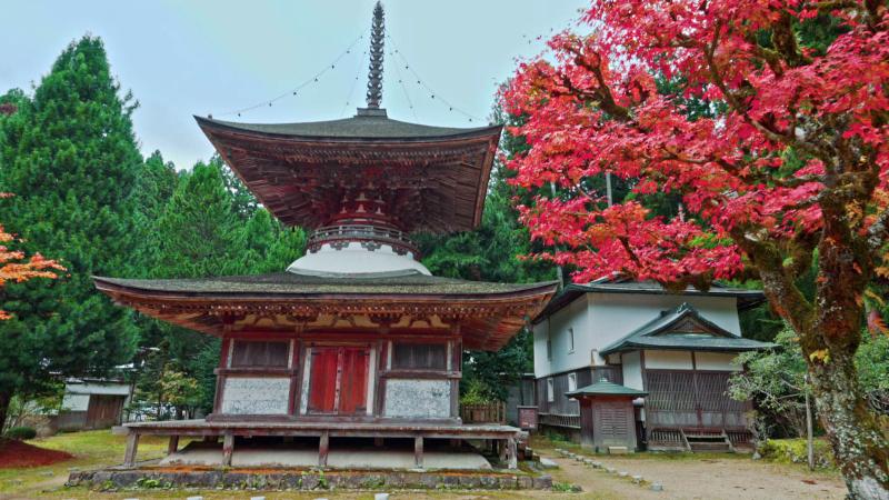 紅葉の中にたたずむ金剛三昧院の多宝塔