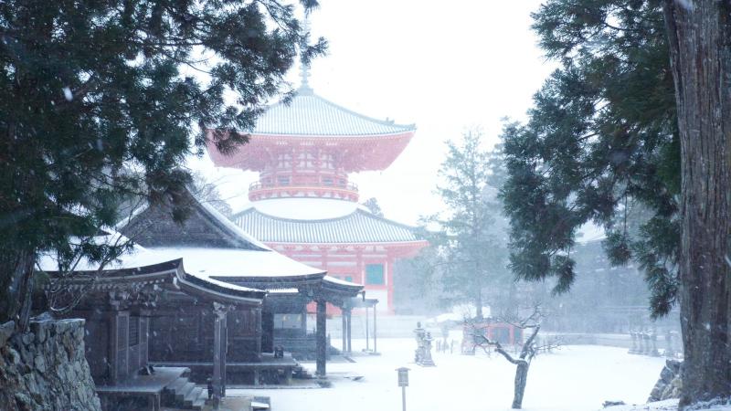 冬の根本大塔